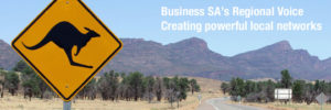 Business-SA's-Regional-Voice-webpage-graphic